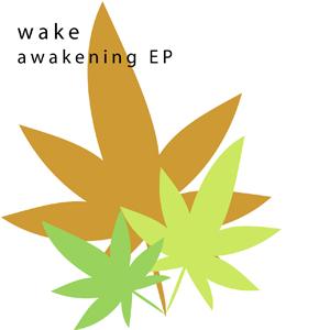 wake awakening EP